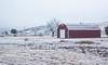 _DSC1257 (kanokwalee) Tags: bigbend westtexas winter 2017 christmas newyear