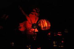 IMG_6491 (comtrag) Tags: jackolanterns rogerwilliamszoo rhodeisland halloween pumpkins pumpkincarving
