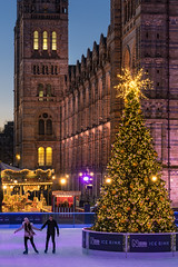 Skating For Two (JH Images.co.uk) Tags: skating christmas tree nhm national history museum hdr dri night christmastree