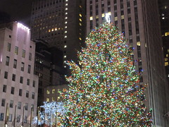 2017 Christmas Tree Rockefeller Center 5048 (Brechtbug) Tags: 2017 christmas tree rockefeller center with lights 12162017 nyc 30 rock new york city standing up above ice rink snow shoveling workers skating holiday decoration ornaments night lites light oversize load ornament midtown manhattan