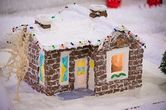 ready for the holidays (raspberrytart) Tags: festivaloftrees christmas gingerbread gingerbreadhouse gingerbreadcookie cookie candy decorating nikon d7100