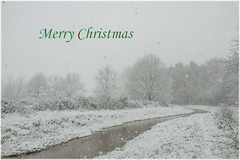 Merry Christmas (Martine Lambrechts) Tags: landscape snow nature water winter tree frost