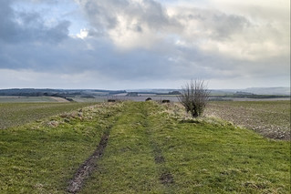The Other Way on Wylye Down