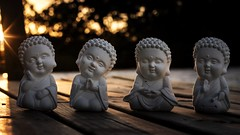 Buddha Seasons (www.leonardocarneirofotografia.com) Tags: buddha buddhism buddhist buda budista budismo sunshine sunset sparks light daylight day shore wood sculpture luz dia entardecer riograndesdosul riotramandaí tramandaí fé faith meditação meditation leocarida brazil canon7dmkii brasil