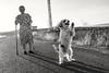 Juega y no muerde (arapaci67) Tags: marina daniel canon70d campiña mascotas atardecer atalaya blancoynegro paseo hobby