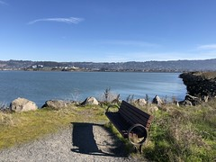 Thinking Bench (Melinda Young Stuart) Tags: bench water shoreline bay berkeley chavezpark sanfranciscobay bayside park explore