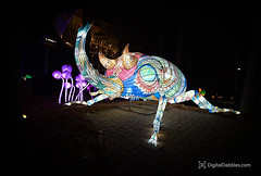 DSC_1520-Edit (DigitalDabbles) Tags: chinese lantern koka booth cary nc festival
