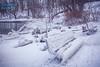 W i n t e r B r e a t h (Chris Robinson Photography) Tags: winter winterishere christmastime sigma35mmf14 rochesternewyork newphotographer newyorkstate snow naturepark holidays almostanewyear parkbench icicles frozen