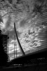 Strings (elgunto) Tags: valencia bridge wires shadows sky clouds silhouette architecture monochrome blackwhite bw smartphone panasonic lumix dmccm1 wideangle