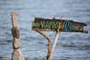 Il lago in dicembre (alfredo.cerutti.79) Tags: dicembre lagomaggiore lungheesposizioni filtro bianconero cigno natura spiaggia
