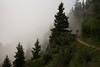 L1001107.jpg (Diueine) Tags: 2017 alps2017 alps europe france leica m rhônealpes summer typ mp 240 m240 rhonealpes chamonix teleelmarm 135mm f4 jill