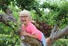 7602 (RebeckaEA) Tags: astrid girl blonde sweden dutch happy smile goofy climbing treeclimbing