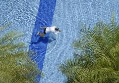 Human Frog (Wormsmeat) Tags: singapore pool snorkel blue tshirt shadow palms olympus penf 12100mzuikopro exercise health swimming leisure height