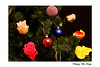 Roses ou lumières ? / Roses or lights ? (Thierry De Neys - Photographies) Tags: thierrydeneys sapin fir spar rose roze pink bleu blauw blue jaune yellow geel vert groen green fête noël boule décoration decoration bal ball rouge red rood feest feast festivity holiday merruchristmas merryxmas xmas happynewyear vrolijkkerstfeest gelukkignieuwjaar