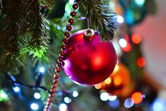 DSC_7198 (seustace2003) Tags: baile átha cliath ireland irlanda ierland irlande dublino dublin éire nollaig kerst christmas noel