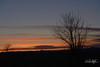 Sunset, Behind Rocky Mountains (dcstep) Tags: dsc8967dxo sky mountains pinkclouds rockymountains tree blue pink sonya7riii fe100400mmf4556gmoss fe20xteleconverter cherrycreekstatepark colorado usa aurora allrightsreserved copyright2017davidcstephens dxophotolab handheld sunset silhouette
