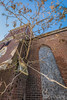 Tree In Bricks (AP Imagery) Tags: gone me abandoned tree historic church nature zion razed ky trinity henderson kentucky decay demolished usa