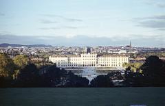 Schönbrunn Palace (floripondiaa) Tags: fujica stx1 film 35mm florishootsfilm vienna austria