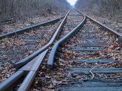 railway2 (Dreamaxjoe) Tags: vasút celldömölk iparvágány elhagyatott railway outofservicerailroadtrack aftersunrise napfelkelteután