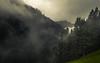 Kleinwalsertal (Netsrak) Tags: alpen alps baum berg berge bäume europa europe landschaft natur nebel stimmung wald fog landscape mist mood mountain mountains nature tree woods at österreich mittelberg kleinwalsertal