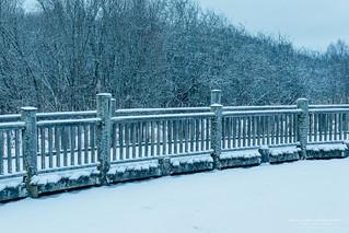 January Snow V