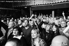 2017 Bosuil-Het publiek bij The Road Home en Vandenberg's Moonkings 8-ZW