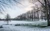 December Snow At Park (aaron_eos_photography) Tags: snow snowscape winter landscape park lurganpark nature trees nikon nikond810 d810 nikon28300mm