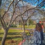 Woman in park thumbnail