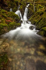 Autumn along the creek (photobydave@gmail.com) Tags: waterfall autumn fall creek landscape moss forest lowlight vancouverisland loggingroad backroads pacificnorthwest renfrewroad longexposure wilderness