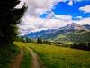Michaelaberg Tour, Steiermark, Austria, 2017 (divemaster0803) Tags: dachstein tauern alpen alps österreich austria steiermark schladming moosheim kaibling on1 ononepics ononesoftware wandern hiking