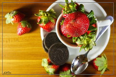 IMG_5140 (jlpvina) Tags: leovinaphotography canon eos 7d philippines pilipinas strawberries baguio
