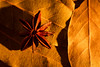 A Star lit by a candle! (bharathputtur122) Tags: star anise macromondays litbycandlelight candle single flame nikon d750 105mm spice bay leaves seed