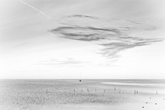 Minimal Motion (Alfred Grupstra) Tags: sea nature beach coastline sky water landscape outdoors cloudsky scenics horizonoverwater sunset summer horizon sand sunlight nopeople seascape blackandwhite tranquilscene highkey 946