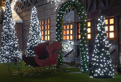 Santa's Grotto (Skyline:)) Tags: trees christmas fatherchristmas festive lights sparkle night astrokeofluck flickrfriday flickr friday