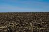 Soil Horizon (NetAgra) Tags: hike iceagetrail season earth countya evansville rockcounty prairie nikon7000 corn crops soil janesville life sky winter magnoliabluff resting tillage
