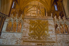 4U5A6434 (bartlett2) Tags: | worcester cathedral christmas trees worcestershire