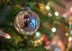 Christmas Click (marionrosengarten) Tags: bokeh lounge bauble reflection mirror selfie sparkle bubbles christmastree baum nadeln needles green decoration hall castle edersee christmas lights lichter nikon nikon50mmf18 openaperture chandelier kugel