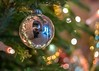 Christmas Click (marionrosengarten) Tags: bokeh lounge bauble reflection mirror selfie sparkle bubbles christmastree baum nadeln needles green decoration hall castle edersee christmas lights lichter nikon nikon50mmf18 openaperture chandelier kugel