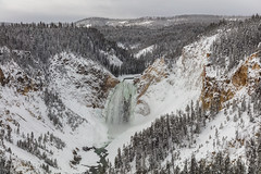Lower Falls from Lookout Point 12.27.17 (YellowstoneNPS) Tags: grandcanyonoftheyellowstone lookoutpoint lowerfalls ynp yellowstone yellowstonenationalpark yellowstoneriver snow winter