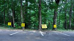 Helen, GA (Golf) (Extrabrandt) Tags: usa helen helengeorgia georgia parking parkplatz parkinglot golfcarts