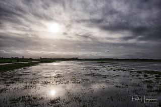 Sky reflections @ Waver/Botshol