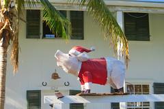 Key West (Florida) Trip 2017 7204Ri 4x6 (edgarandron - Busy!) Tags: florida keys floridakeys keywest house houses building buildings christmas christmasdecorations decorations whitestreet
