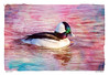 Bufflehead Drake ~ Original Poem by John R. Williams (Johnrw1491) Tags: fine art avian birds waterfowl ducks divers poetry poem buffleheads wildlife literary