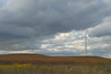 Energy (rdodson76) Tags: field windturbine turbine wind kansas prairie meadow windfarm power energy electricity weather clouds climate climatechange renewables recharge natural clean windmill grass weeds green yellow brown hills day alone scale size large big huge generator sky industrial nature technology alternative landscape generation renewable environmental environment