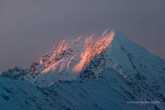 Face the sunset (Traylor Photography) Tags: alpenglow shadows sunset peak turnagainarm alaska colors alyeska girdwood lightsource snow mountain anchorage unitedstates us sundaylights winter