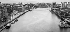 Millennium Bridge, Newcastle upon Tyne. . . (CWhatPhotos) Tags: cwhatphotos olympus esystem four thirds digital camera sigma 19mm art lens pictures picture photo photos image images foto fotos that have which contain taken newcastle upon tyne north east england uk 2017 dec december millennium bridge river rivertyne wet cold damp rainy rain day boats boat city centre