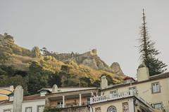 Árbol con aspiraciones (palm z) Tags: sintra portugal fachada fachadas castillo