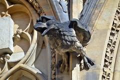 Gargoyles - 40 (fotomänni) Tags: gargoyles gargouille skulptur sculpture skulpturen steinfiguren prag praha prague veitsdom manfredweis