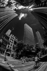 Centro do Rio de Janeiro (mariohowat) Tags: centrodoriodejaneiro pb bw pretoebranco monochrome blancoynegro fisheye samyang8mm canon blackandwhite brazil brasil