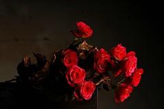Old Roses (Studio d'Xavier) Tags: oldroses rose bouquet red rouge rudd flowers stilllife strobist